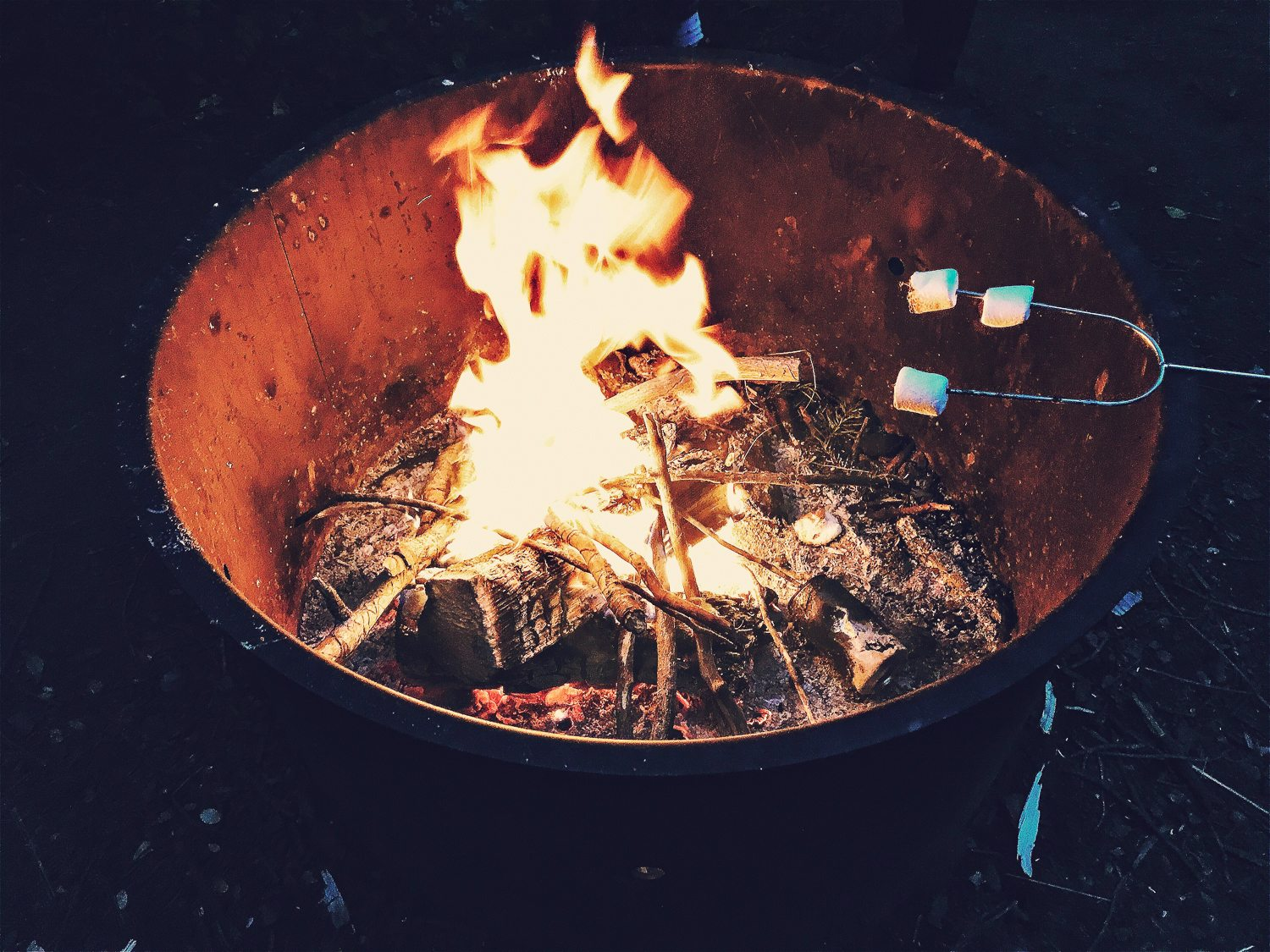 Cooking marshmallows on a firepit